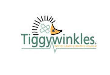 St Tiggywinkles